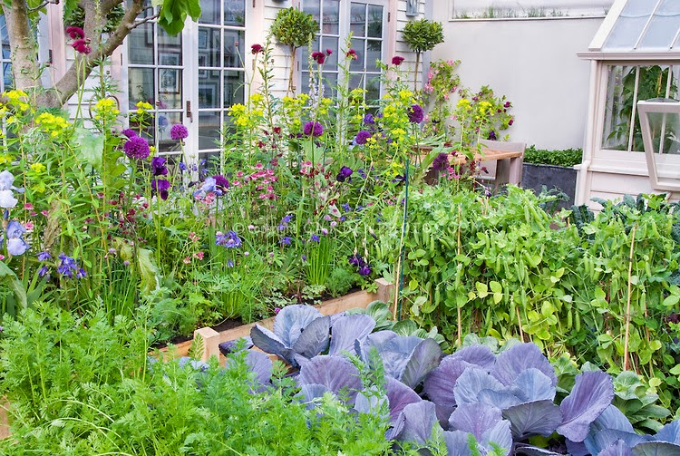 Home gardening flowers and vegetables ideas freshnist design for Vegetable and flower garden ideas