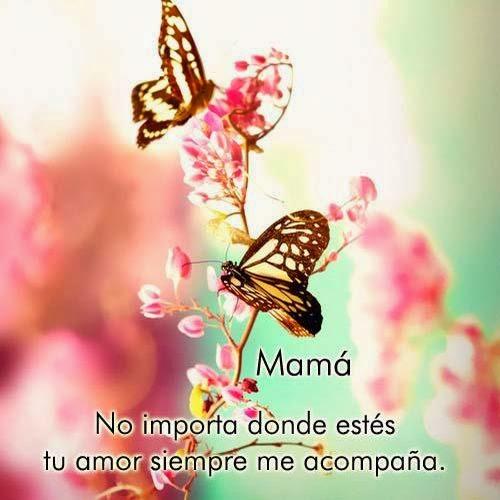 Frases Dia De La Madre: Mamá No Importa Donde Estés Tu Amor
