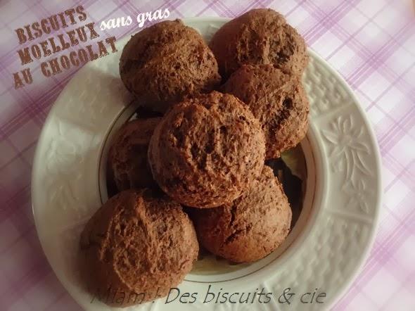 biscuits moelleux au chocolat sans gras miam des biscuits. Black Bedroom Furniture Sets. Home Design Ideas