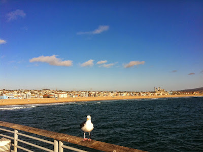 The Hermosa Beach strand