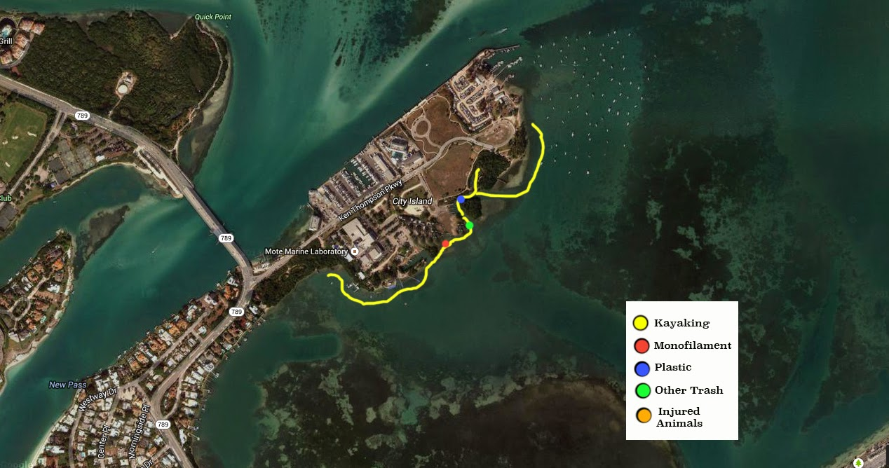 Kayak Cleanup Map
