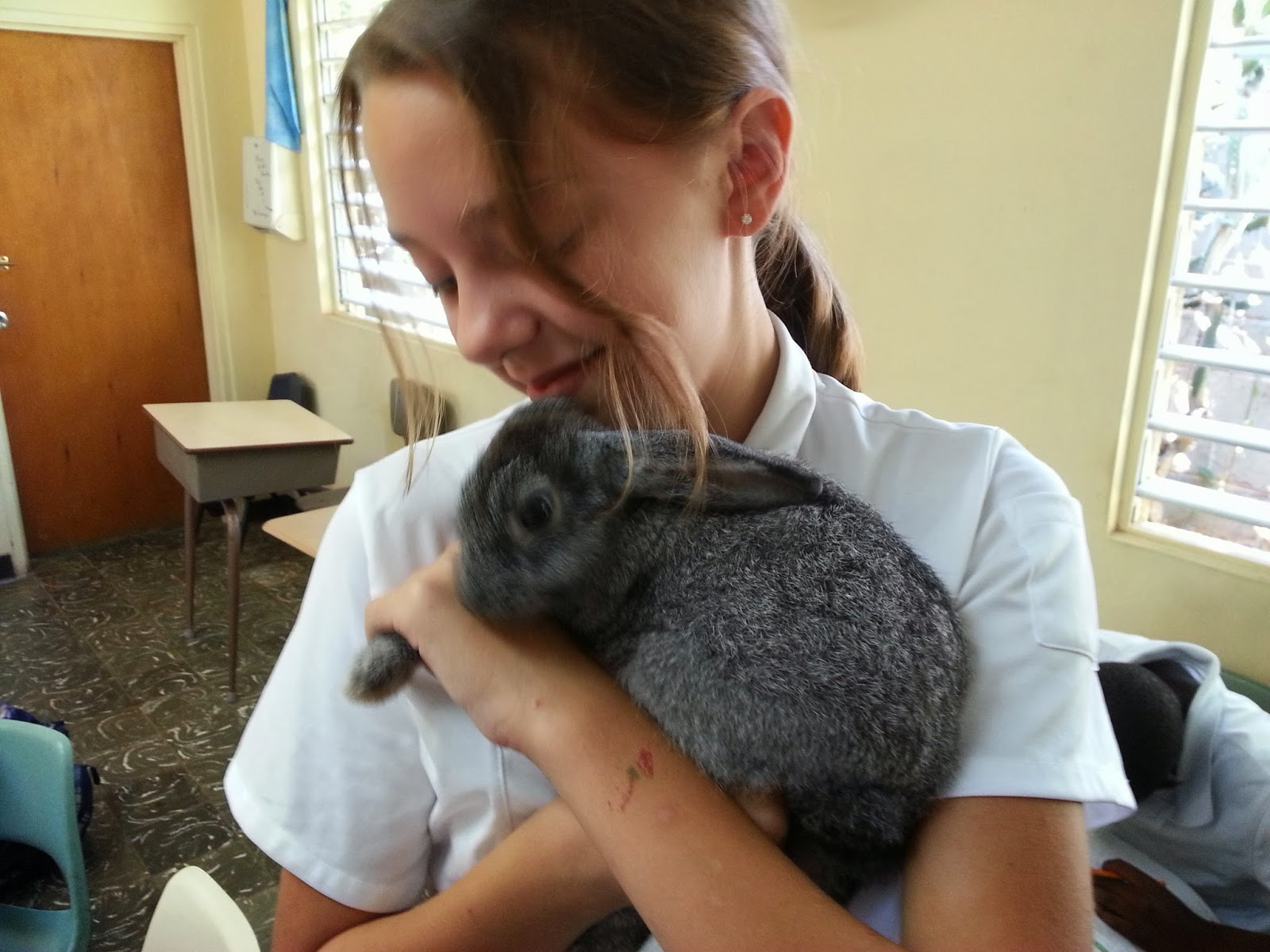 Therefore Having Gone ...: A GIRL AND HER BUNNIES