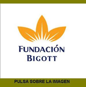 Fundación Bigott