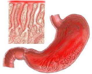 gallbladder symptoms years after gallbladder removal
