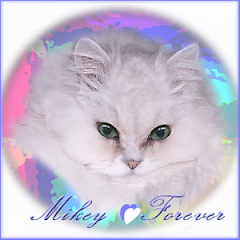 Mikey  RIP