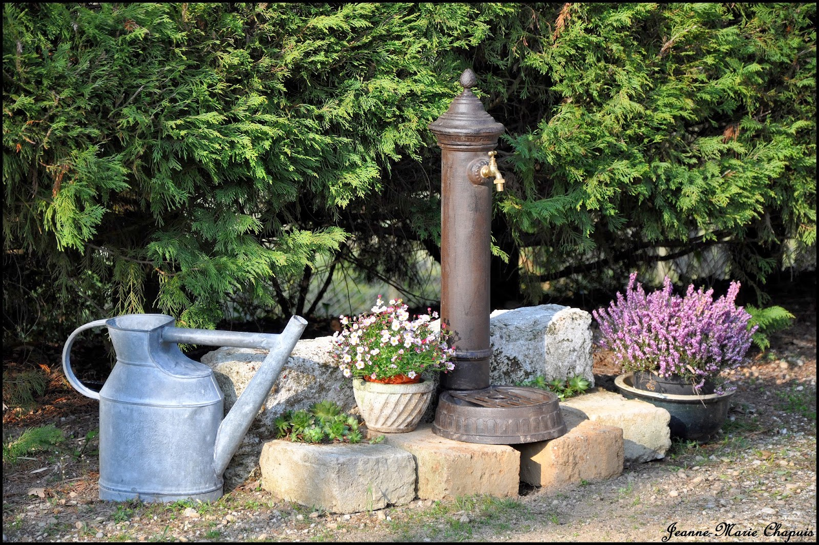 Le jardin du bois joli nouveau petit point d 39 eau - Point d eau dans le jardin ...