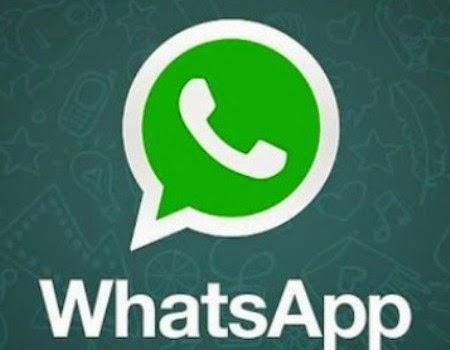 Forex signals whatsapp