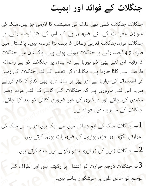 Essay on tree plantation in urdu