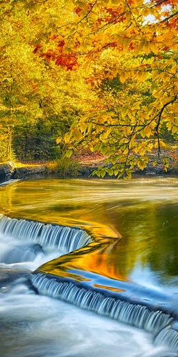 Autumn at Bond Falls, Michigan