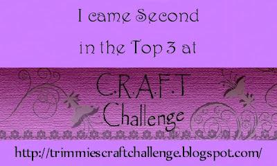 Top 3 at C.R.A.F.T