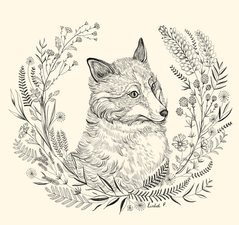 Line Drawing Fox : Pim pimlada surface pattern design illustration