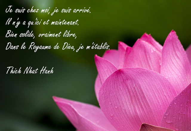 http://www.thich-nhat-hanh.fr/