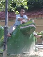 Ayahku menunggang katak....