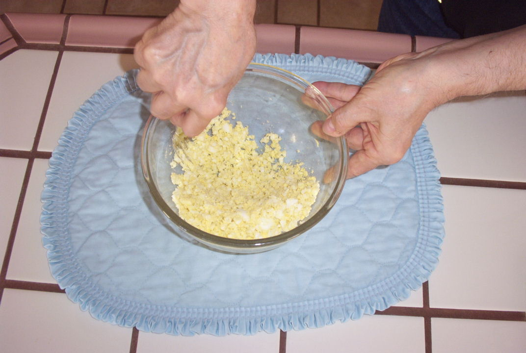 The splendid bourke bird blog preparing egg food for breeding birds 4 use a fork for finer texture forumfinder Gallery