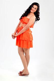 Hudasha Tamil Model Portfolio Saree Pics