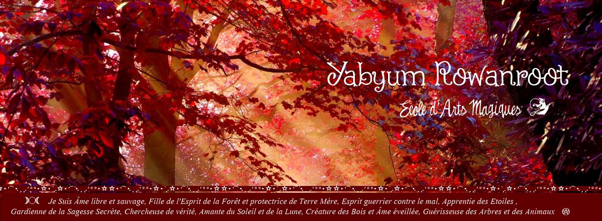 ☆☾ °Yabyum Rowanroot  ☾ Ecole d'Arts Magiques ° ☆. *  ☆ Site Officiel