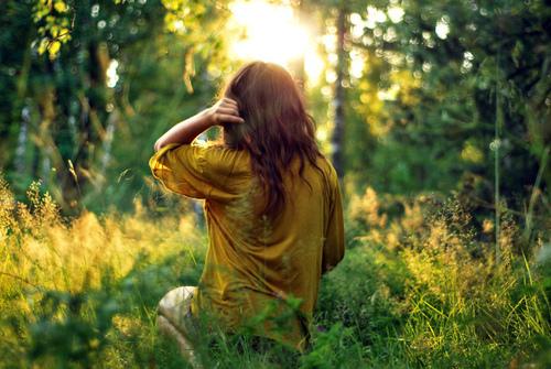 Golden butterflies mi sono persa nei boschi s avete for Cabina innevata nei boschi