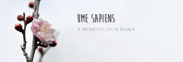 http://www.umesapiens.com