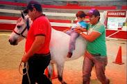 Más de 300 personas beneficiadas en jornada de equino-terapia en Timotes