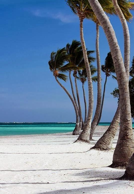 Windy Paradise, Cap Cana, Dominican Republic.