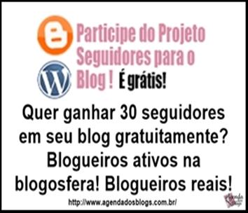Ganhe seguidores para seu blog: