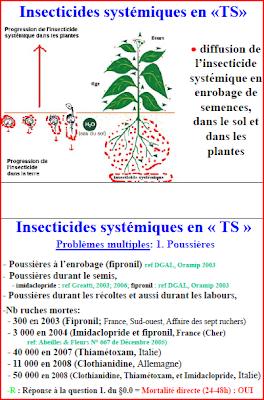 Insecticides systémiques en TS