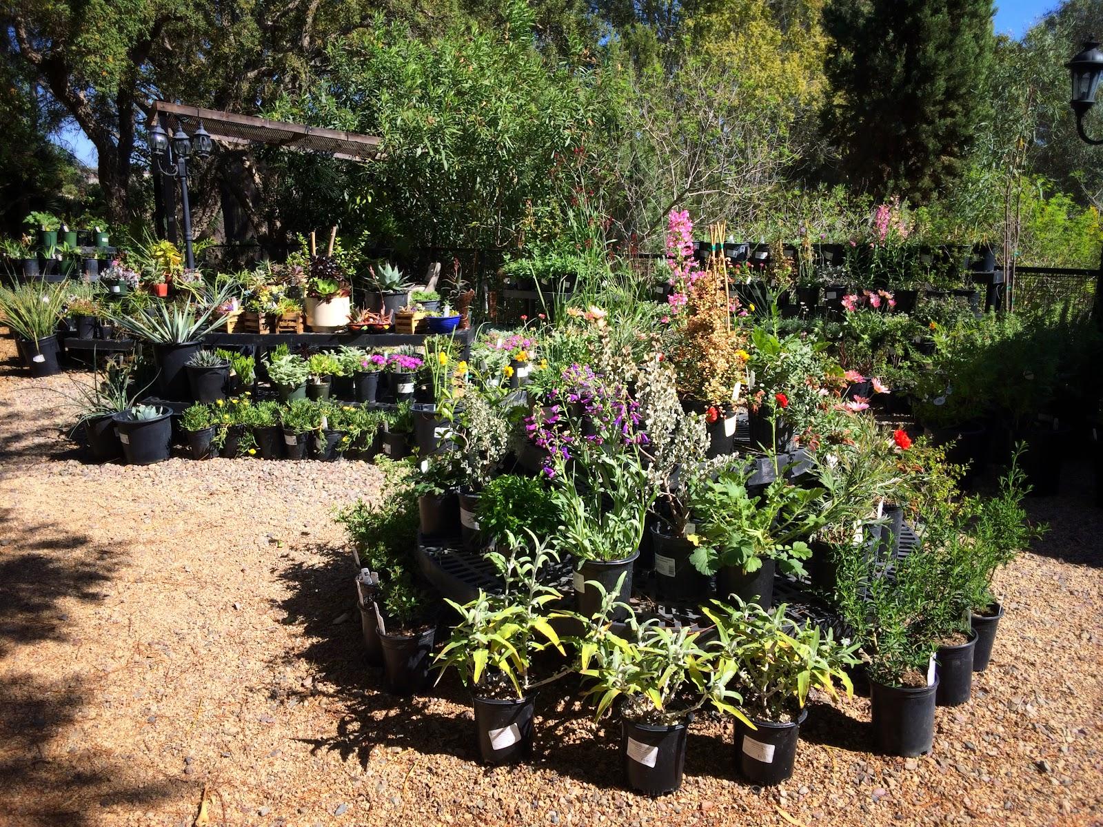 san go botanic garden encinitas ca in pics chez shinae