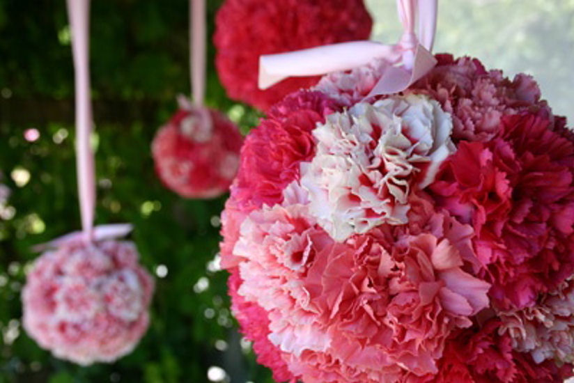 Budget Friendly Flower Inspiration Carnations