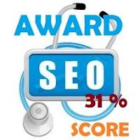 samsury seo score 31%