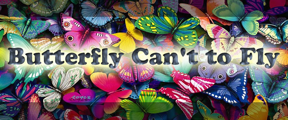 Butterfly Can't to Fly