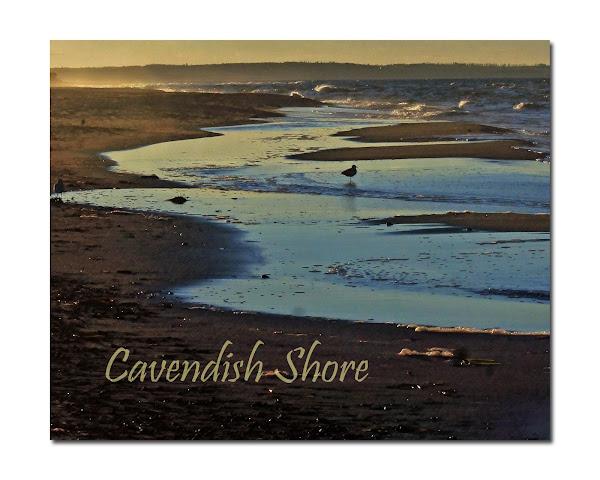 Cavendish in my minds eye