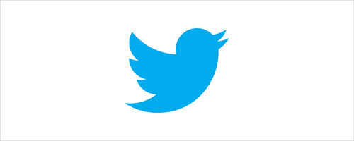 Twitter Bird Logo Design