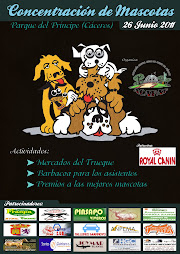 Concentración mascotas 2011
