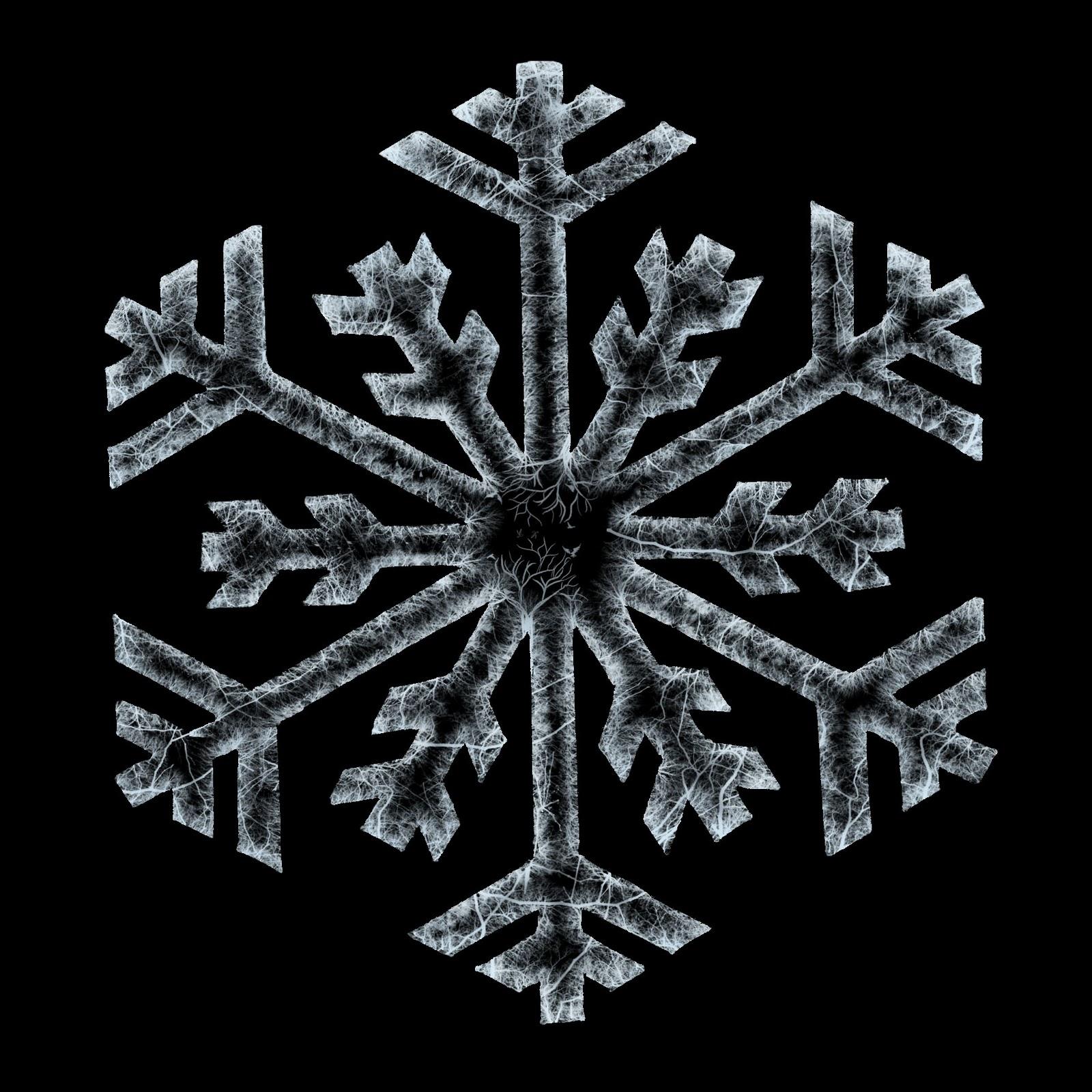 http://4.bp.blogspot.com/-wAlwlCF7Gas/Tvh43RZeZpI/AAAAAAAAAc8/Qi7F2kSXogg/s1600/sophie_egler_snowflake_ice.jpg