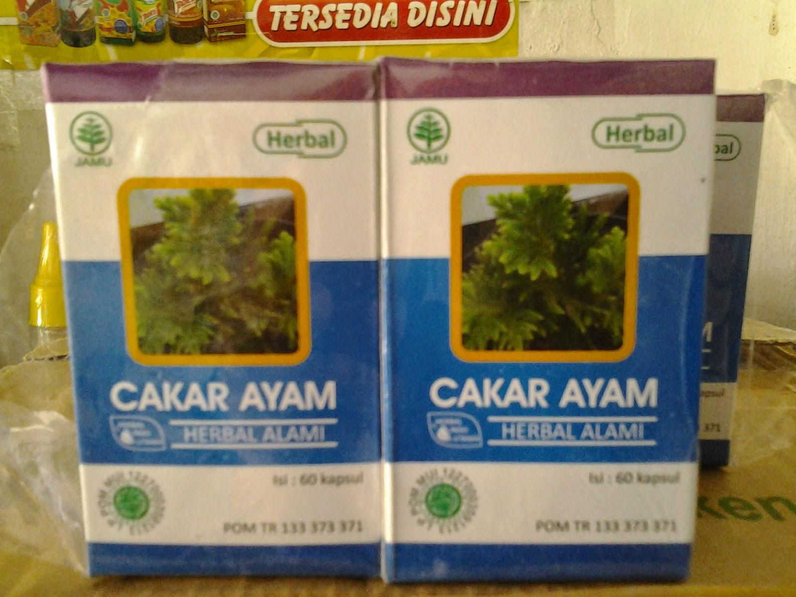Herba Indo Utama - Herbal Tunggal - Cakar Ayam