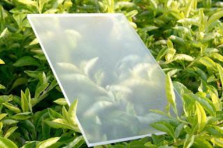 光伏玻璃  信義玻璃