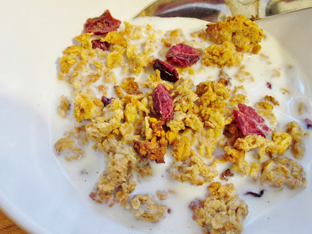 Cranberry Orange Cashew Granola Recipe