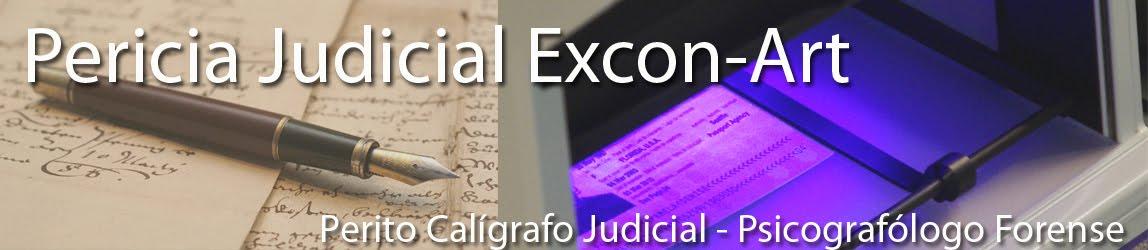 Pericia Judicial Excon-Art Lugo