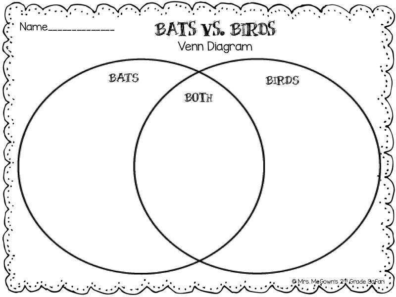 venn diagram bats and birds  venn  free engine image for