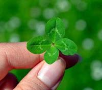 las 4 hojas del trébol de la suerte