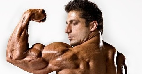 Building Muscle Mass - 5 Bodybuilding Tips For Hardgainers