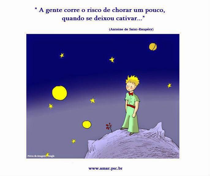 Mais sabedoria do Pequeno Príncipe...