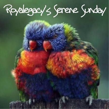 Bildergebnis für happy sunday bird images