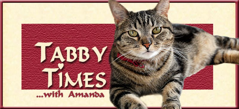 Tabby Times
