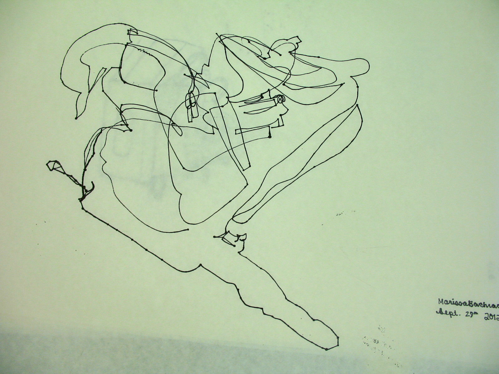 Contour Line Drawing In Art : Art ii weighted contour line fairhaven high school visual arts