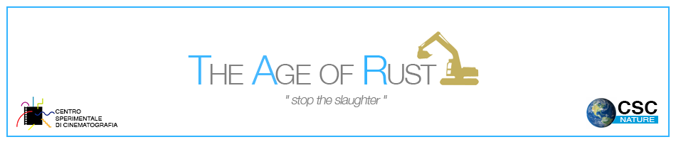 The Age of Rust