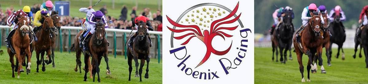 ***** Phoenix Racing™ *****
