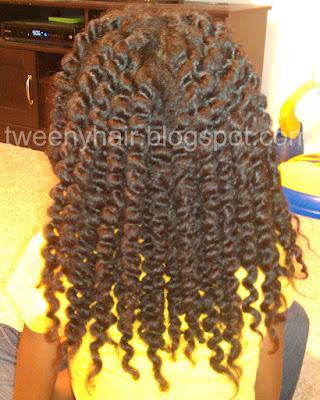 Human Hair Twist Gallery 88