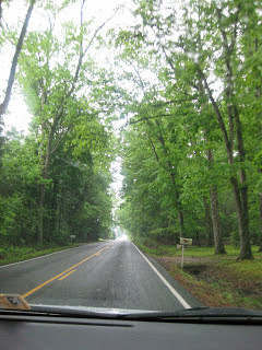 Beautiful Virginia Greenery - May 2013