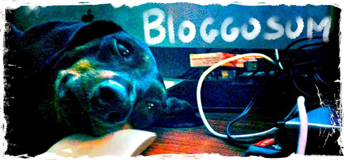 BloggoSum